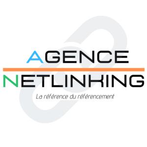 logo-agence-netlinking-v2